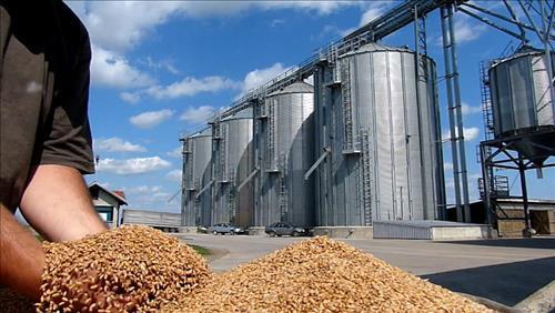 Chọn công nghệ silo bảo quản lúa là phù hợp